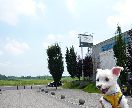 2009福島 050.JPG