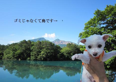 2010fukunasu 040.JPG
