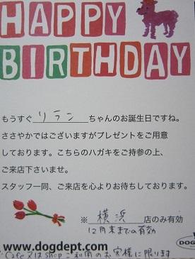 お誕生日 001.JPG