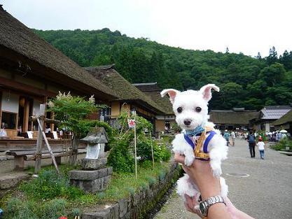 2008夏休み 005.JPG