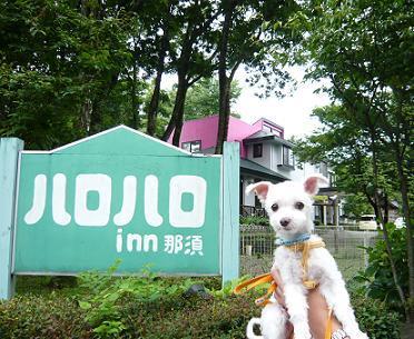 2008夏休み 060.JPG