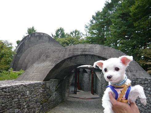 2009夏休み(八ヶ岳軽井沢) 046.JPG