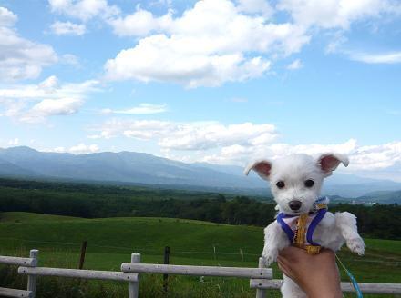 2009夏休み(八ヶ岳軽井沢) 079.JPG