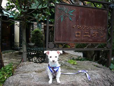 石神井公園 002.JPG