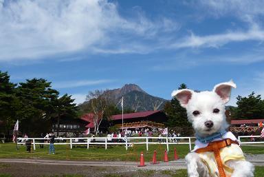 八ヶ岳200810 030.JPG