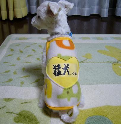 洋服.JPG