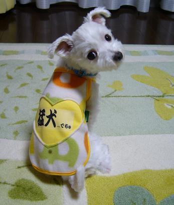洋服2.JPG