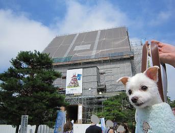 2010fukunasu 050.JPG