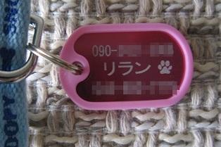 201108a 001.JPG