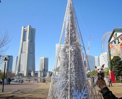 2012.Dec 006.JPG