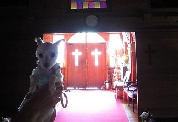 2013夏休み 004.JPG