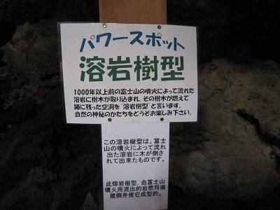 2014夏休み 153.JPG