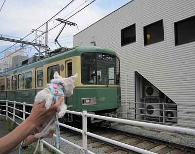 2014GW 江ノ電.JPG