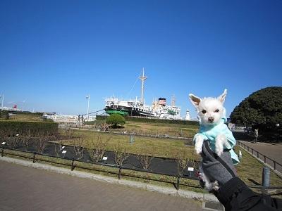 お散歩コース (2).JPG