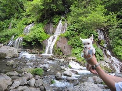 吐竜の滝 (9).JPG