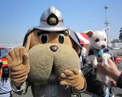 消防士さん 003.JPG