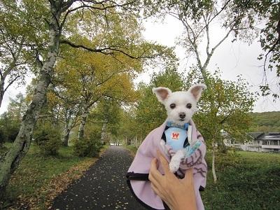 秋の旅行 005.JPG