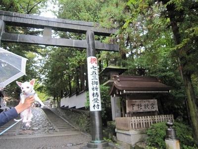 諏訪大社・秋宮 (2).JPG