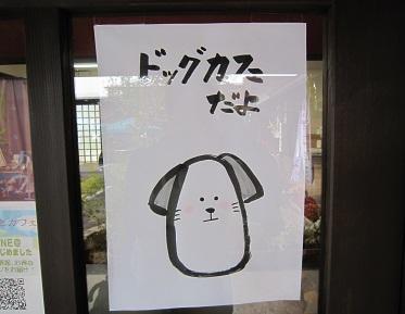 諏訪大社・本宮 (6).JPG