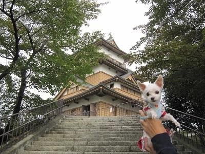 諏訪・高島城 (2).JPG
