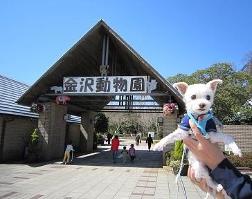 金沢自然公園 011.JPG