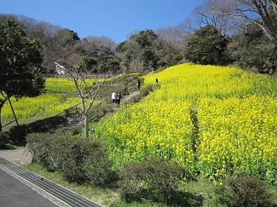 金沢自然公園 019.JPG