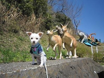 金沢自然公園 032.JPG