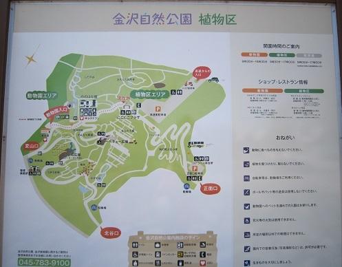 金沢自然公園 036.JPG