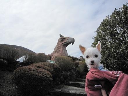シャボテン公園 (39).JPG